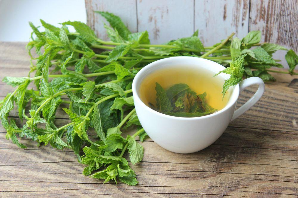 Chá de Hortelã e gengibre refrescante